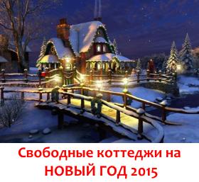 Снять коттедж на новый год 2015